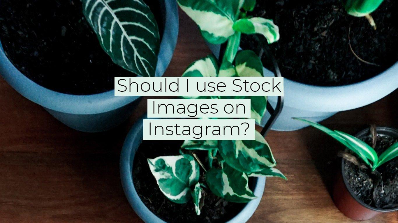 Should I Use Stock Images on Instagram?