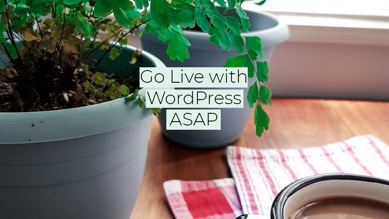 Get your WordPress Live, Fast